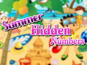 SUMMER HIDDEN NUMNBERS