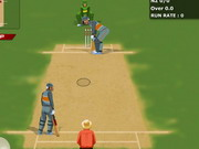 World Cricket