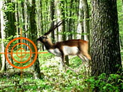 Deer Hunting Hacked