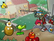 Angry Bird Vs Green Pig Zombies