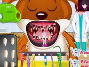 Animal Dentist