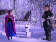 Frozen Image-Disorder