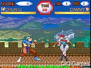 Street Fighter World Warrior 2